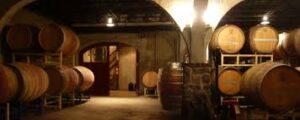 Vakopleiding: Wijnbouwkunde